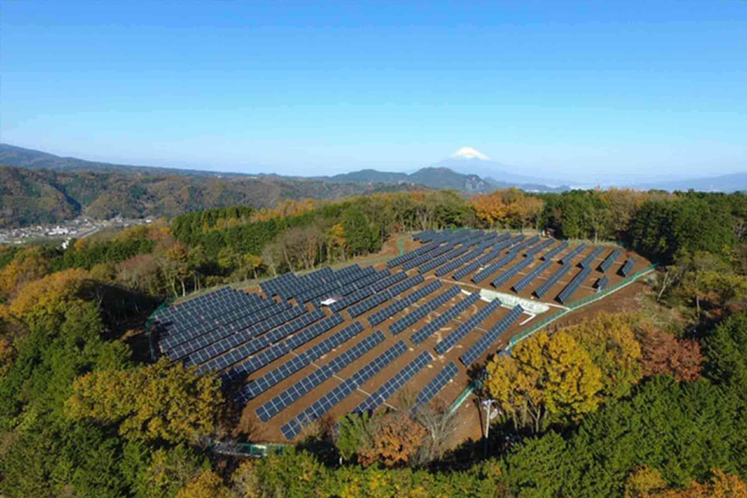 huerto solar rentabilidad